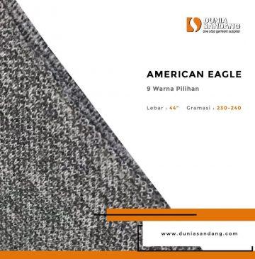 american eagle (1)