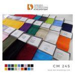 cm24 s 31 warna