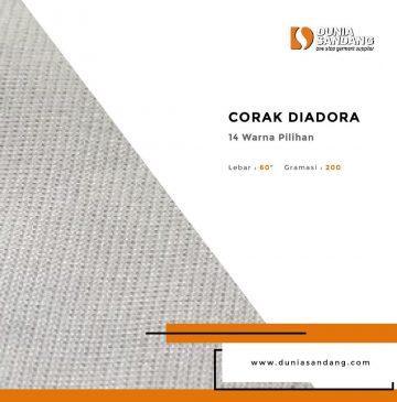 diadora (1)